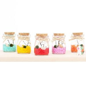 마리모 세트 LED 반려식물 수경식물 피규어증정