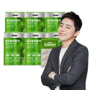 [GNM자연의품격] 징코빌로바 은행잎 징코 6박스 총6개월분(11중기능성)