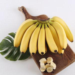 (전단상품)바나나 필리핀  송이
