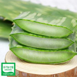 껍질째 먹는 유기농 알로에 사포나리아 생잎 3kg