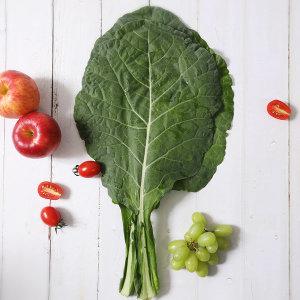 친환경 유기농 케일 2kg 무료배송
