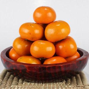 달콤아삭 경남단감 11KG / 알뜰형 혼합과