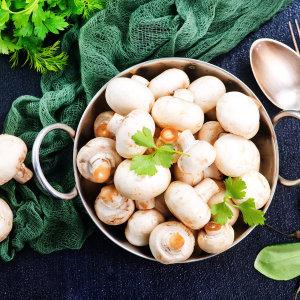 우리네농산물 양송이 버섯 상품 500g