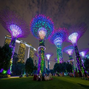 싱가포르 5일 (1일자유일정)