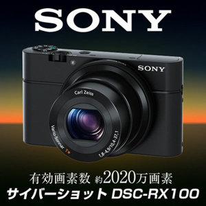 소니 사이버샷 DSC-RX100(해외직구 관세포함)