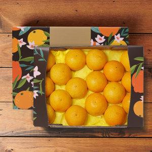 서귀포 황금향 3kg 17-20과(선물세트)