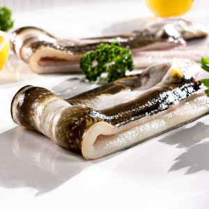 [쵱선생] 통영 자연산 바다장어 아나고 붕장어 (대)구이용 4~5미