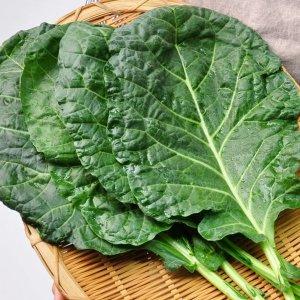 전남 담양 김민자님의 유기농 케일 2kg