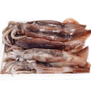선상동결 오징어 1kg(3~5미) 채낚이 어획 상태A급