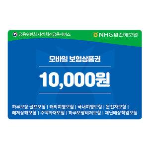 NH농협손해보험 1만원권 보험상품권