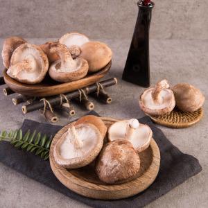 표고버섯 중품(생표고) 1kg