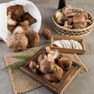 표고버섯 못난이(생표고 가정용) 1kg