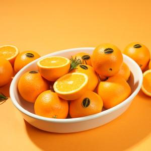 고당도 오렌지 3kg+착즙기증정