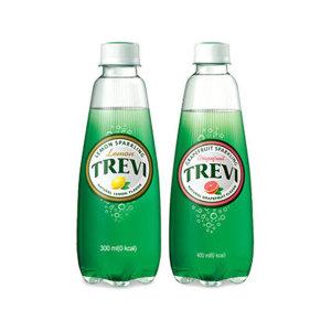 [트레비] 트레비 레몬 300ml 20펫+자몽 300ml 20펫