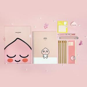 카카오 복주머니 센스 뿜뿜 문구세트 선물세트 라이언