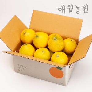 애월농원 황금향 2kg소과(2개구매시 4.5kg발송)