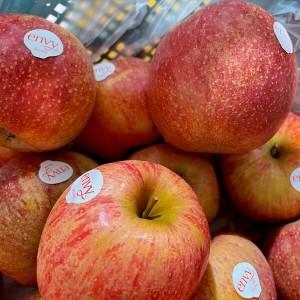 [슈퍼위크] 사과 8KG/43-56과