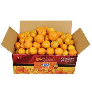 흑토농원 새콤달콤 노지감귤 5kg 소과(2S~S)