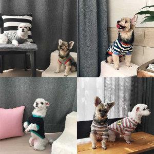 시크릿 애견의류 모음전 강아지옷 고양이옷 애견옷