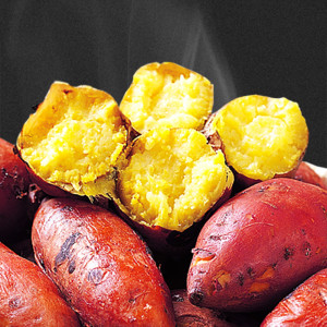 꿀고구마 20년산 햇고구마 5kg(중상50~100g)