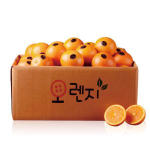 2개구매113과발송/고당도 오렌지 53과