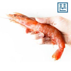 [훈훈] 훈훈수산 자연산 홍새우 1kg (적새우 왕새우)
