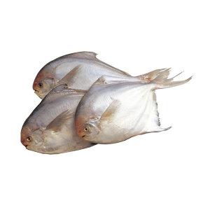 (15%) 국내산 자연산 병어 500g