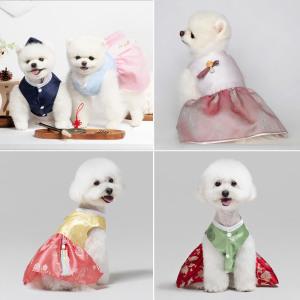 메종드독 강아지 한복