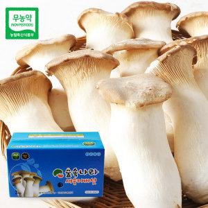 옐로우씨티 장성 백양사농협 새송이버섯 1kg(특품)