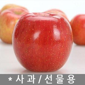 사과9~10kg..홍옥사과 간식 과일애플 부사주스 tkrhk