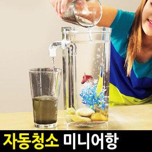 자동청소 미니어항/물갈이/싸이펀/풀세트/수조/열대어