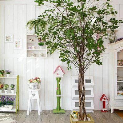 (자작나무)인조나무/인테리어소품/조화/실내조경/DIY - G마켓 모바일